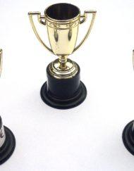 Mini Trophy-0
