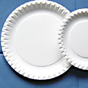 "20 x 9"" Paper Plates-0"