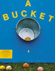Ball In Bucket Hire-0
