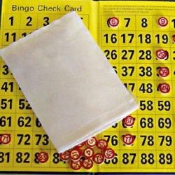 Budget Bingo Set-0
