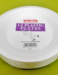 "12 x 7""Foam (Polystyrene) Plates-0"
