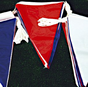 10 Metre Standard Bunting Red/White/Blue-0