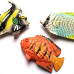 Goldfish-0