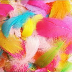 Easter Feathers-0