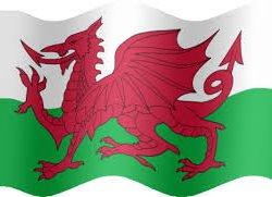 Welsh Dragon Flag 5' x 3' (Polyester)-0