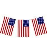 USA Plastic Flag Bunting -0