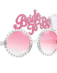 Hen Party Bride to be Funshades-0